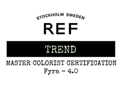 Mastare Colourist Certification Trend 4.0 Fyra
